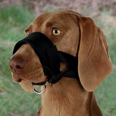 Trixie Hondenmuilkorf Nylon Grote honden