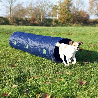 Trixie Agility Tunnel Pup en Kleine Hond