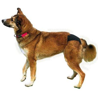Trixie Beschermbroekje Hond zwart