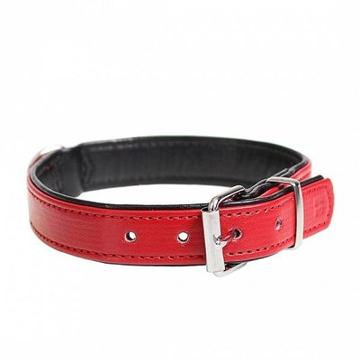 Duvo+ Hondenhalsband Kunstleer rood