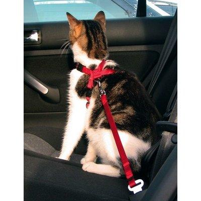 Trixie Katten Auto Tuig