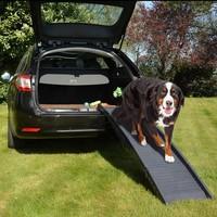 Duvo+ Loopplank Auto tot 50kg