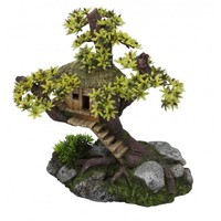 Aqua Della Tree house
