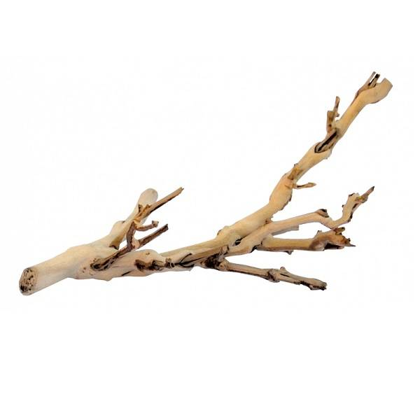 Exo Terra Forest Branch