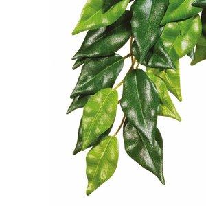Exo Terra Terrarium Plant Ficus