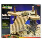 Schildpad Eiland Turtle Pier