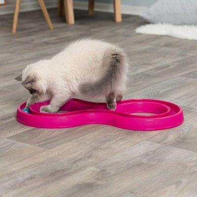 Trixie Kattenspeelgoed Flashing Ball Race