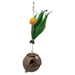 Trixie Speelgoed voor Valkparkieten Kokosnoot aan Sisaltouw