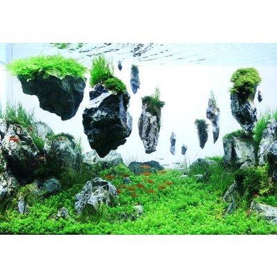 Aqua Della Drijvende Steen met Zuignap S