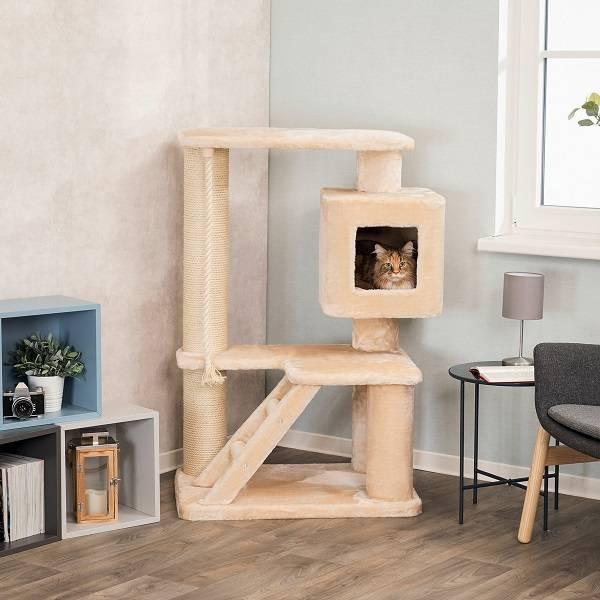 Krabpaal voor grote en zware katten zoals de Maine Coon en Boskatten