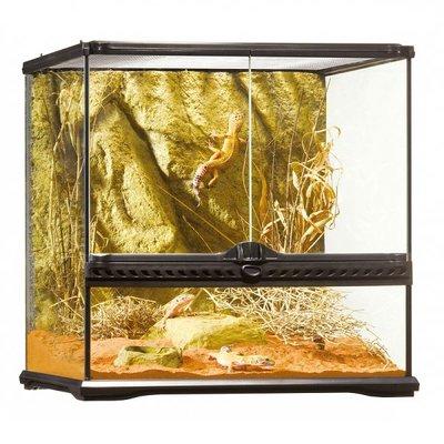 Exo Terra Glazen terrarium incl. achterwand 45x45x45cm