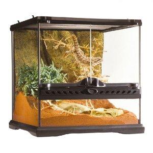 P45 Glazen terrarium incl. achterwand 30x30x30cm