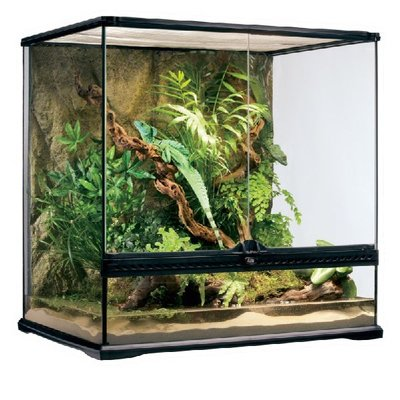 Exo Terra Glazen terrarium incl. achterwand 60x45x60cm
