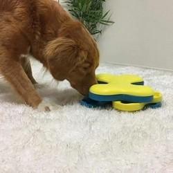 Hondenpuzzels