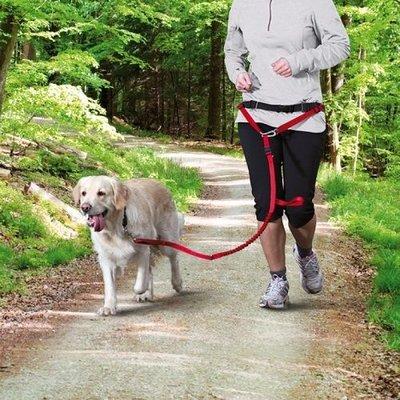 Trixie Looplijn met heupriem rood middel en grote honden