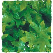 ZooMed Terrarium Kunstplant Congo Ivy