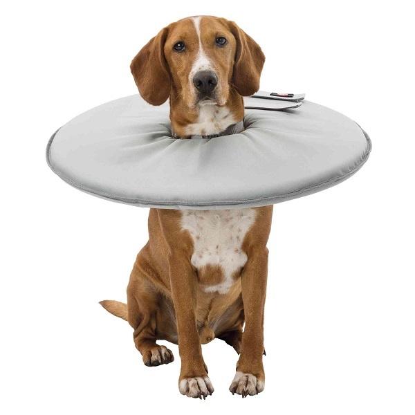 Een alternatief voor kap hond