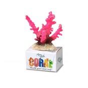 Aqua Della Coral Reef Module Staghorn Roze S