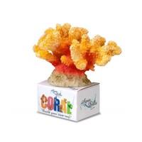 Aqua Della Coral Reef Module Cauliflower Geel M