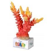 Aqua Della Coral Reef Module Staghorn Oranje L