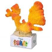 Aqua Della Coral Cauliflower yellow/orange