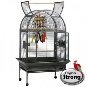 Strong Papegaaienkooi Isa grijs