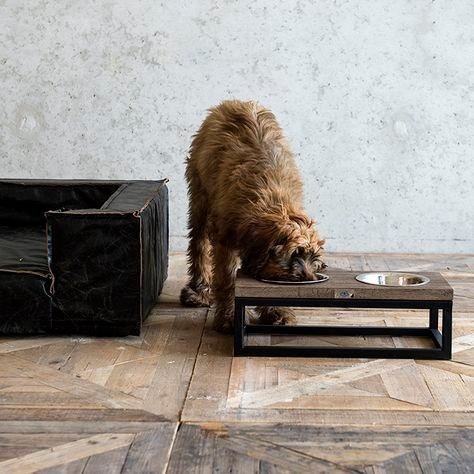 Voer en Drinkbak Hond