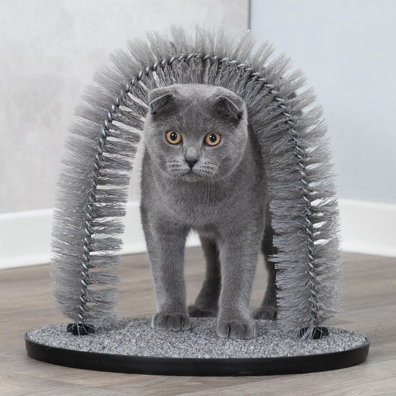 Kattenborstel kopen