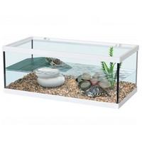 Aquatlantis Schildpadbak Tortum 55 wit