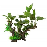 Aqua Della Flora Scape 3