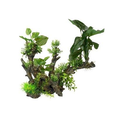 Aqua Della Flora Scape 1