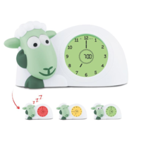 Sam Sleeptrainer Mint - Scheep