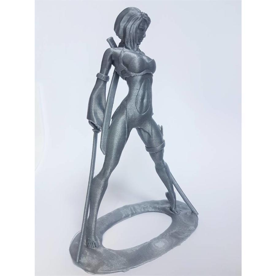 PLA Rapunzel Silver, 1.75 / 2.85 mm, 750 grams (0.75 KG)-3