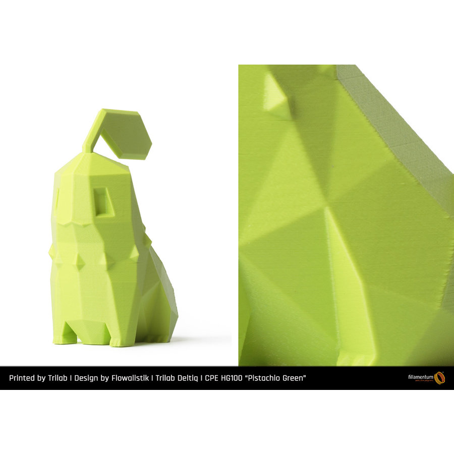 CPE HG100 Gloss, Pistachio Green / Pistache groen, verbeterd PETG-4