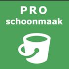 PRO Schoonmaak