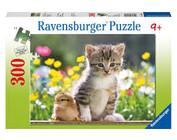 Puzzels voor kinderen 200 tot 300 stukjes