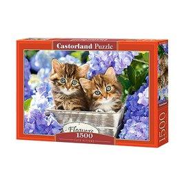 Castorland puzzels PUC15161 - Cute Kittens 1500 stukjes