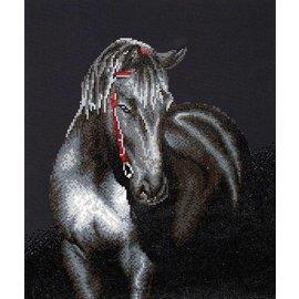 Diamond Dotz: Midnight Stallion