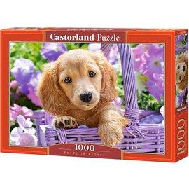 Castorland puzzels PUC103799 - Puppy in Basket 1000 stukjes
