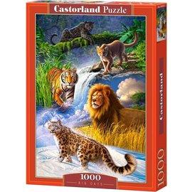 Castorland puzzels PUC103553 - Big Cats 1000 stukjes