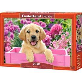 Castorland puzzels PUB030071 - Labrador puppy in roze kist 500 stukjes