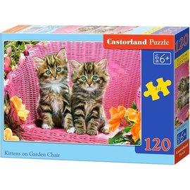 Castorland puzzels PUB13357 - Kittens in de stoel 120 stukjes