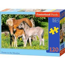 Castorland puzzels PUB12909 - Ponies in de wei 120 stukjes
