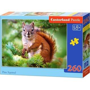 Castorland puzzels PUB27422 - Eekhoorn in dennenboom 260 stukjes