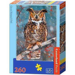 Castorland puzzels PUB27347 - Grote uil 260 stukjes