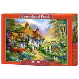 Castorland puzzels PU3004022 - Forrest Cottage, 3000 st.