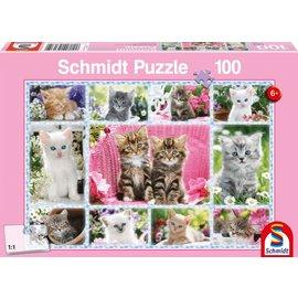 Schmidt Kittens, 100 stukjes