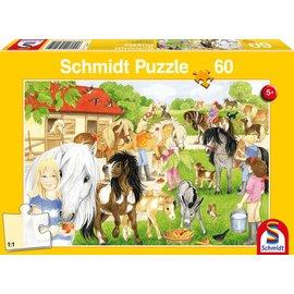 Schmidt Lol op het ponyerf, 60 stukjes
