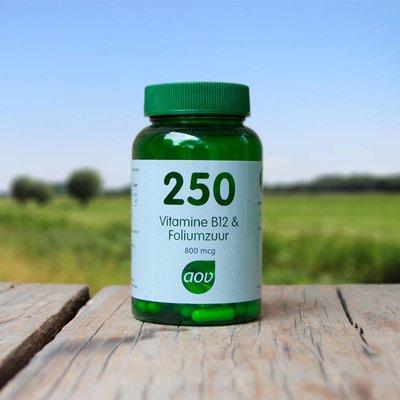 AOV  Vitamine B12 en Foliumzuur 250