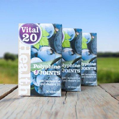 Vital 20 Polyphine Goed voor Gewrichten,  3 stuks voordeel
